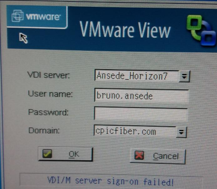 WYSE V10L _ WNOS INI _ DHCP161 _ 2 CLUSTER´S(VM View